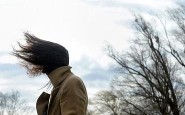 Umayra Tağıyeva: Abşeron yarımadasında sürəti 25 metr/saniyədən çox olan küləkli günlərin sayı artıb
