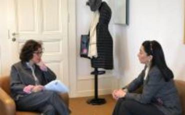 Ombudsman BMT-nin İnsan Hüquqları üzrə Ali Komissarlığında bir sıra görüşlər keçirib