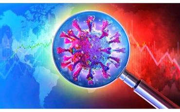 Biofizika İnstitutunun COVID-19-a dair araşdırmaları TƏBİB-in müalicə protokoluna daxil edilib