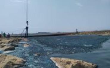 Böyük Şor gölünün çirkli maddələrdən təmizlənməsi davam etdirilir