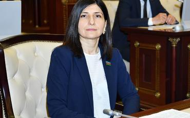 Ermənistanla informasiya savaşında Türkiyənin dəstəyi əvəzsiz oldu - Sevil Mikayılova