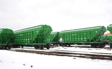 Rusiya BTQ ilə Türkiyəyə 500 ton buğda çatdıracaq