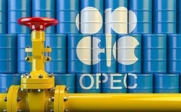 OPEC ölkələri fevralda neft hasilatını azaldıb