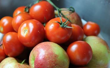 Azərbaycanın bir neçə müəssisəsindən Rusiyaya alma və pomidor idxalına icazə verilib