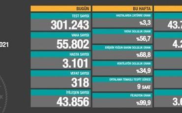 Türkiyədə bu gün 318 nəfər COVID-19-dan ölüb